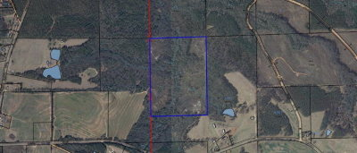 Straughn AL Residential Lots & Land For Sale: $108,000