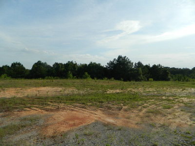 Andalusia Commercial For Sale: River Falls St