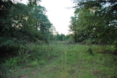 Andalusia Residential Lots & Land For Sale: 2.86 Ac Bush Isle Rd