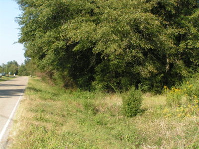 Andalusia Residential Lots & Land For Sale: Antioch Rd (County Road 49)