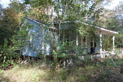 Andalusia Single Family Home For Sale: Antioch Rd (County Road 49)