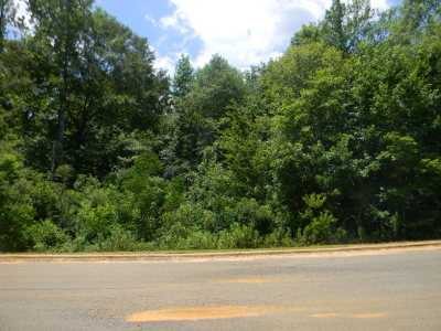 Andalusia AL Residential Lots & Land For Sale: $21,000