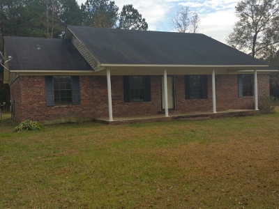 Andalusia Single Family Home For Sale: 11435 County Road 43