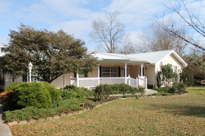 Andalusia Single Family Home For Sale: 1117 Shady Lane Ave