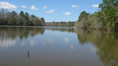 Andalusia AL Residential Lots & Land For Sale: $43,000