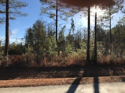 Andalusia Residential Lots & Land For Sale: 27991 Harbor Rd