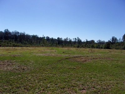 Andalusia Residential Lots & Land For Sale: Straughn School Rd (County Road 43)