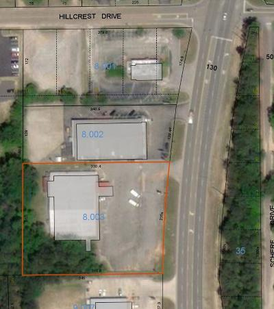 Commercial For Sale: 206 Us Hwy 84 Bypass