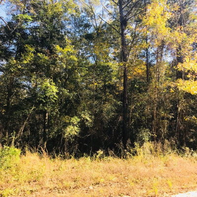 Residential Lots & Land For Sale: 8.42 Acr Riverside Dr