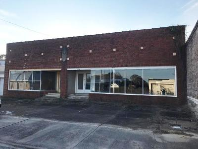 Andalusia Commercial For Sale: 234 S Cotton St