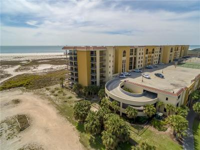 Mobile County Condo/Townhouse For Sale: 1601 Bienville Boulevard #301