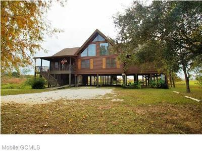 Baldwin County Single Family Home For Sale: 10417 County Road 1