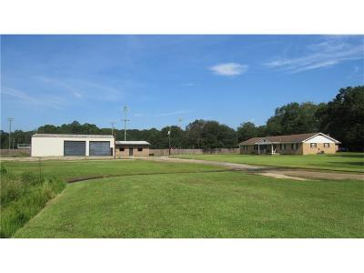 Saraland Single Family Home For Sale: 25 Richie Street