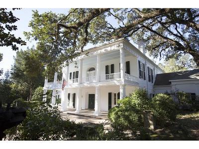 Mobile Single Family Home For Sale: 55 McGregor Avenue S