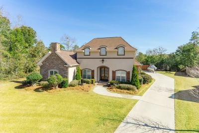 Single Family Home For Sale: 9130 Old Roman Circle
