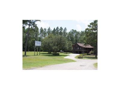 Mobile County Single Family Home For Sale: 15551 Moffett Road
