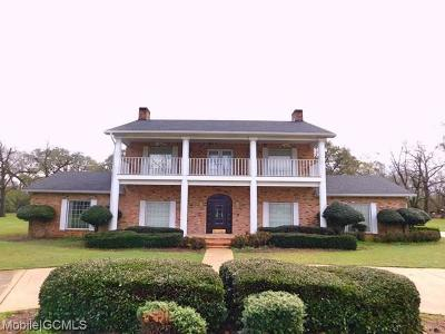Mobile County Single Family Home For Sale: 19800 5th Street