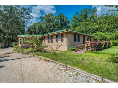 Semmes Single Family Home For Sale: 4979 Lott Road
