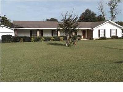 Citronelle Single Family Home For Sale: 19655 Hester Drive