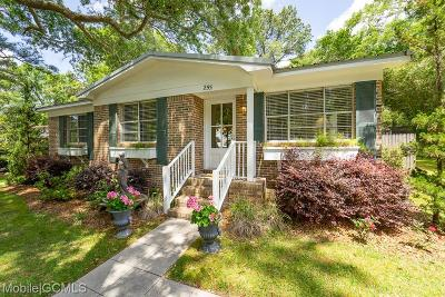 Baldwin County Single Family Home For Sale: 255 Fig Avenue