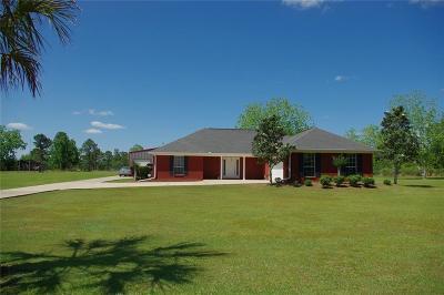 Grand Bay Single Family Home For Sale: 12190 Ballard Road