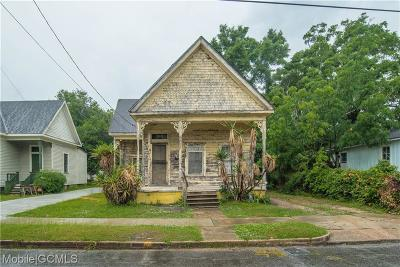 Mobile Single Family Home For Sale: 456 Chatham Street
