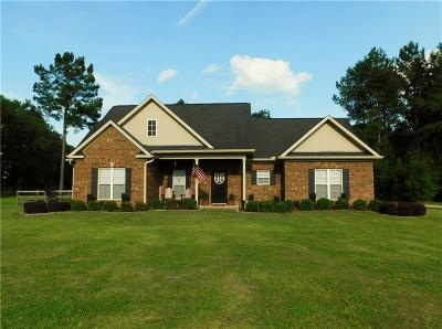 Mobile County Single Family Home For Sale: 10668 Old Highway 43
