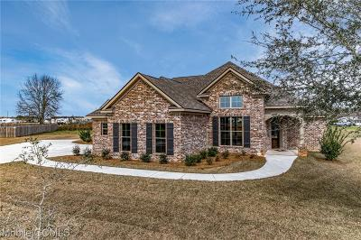 Baldwin County Single Family Home For Sale: 10985 Warrenton Road