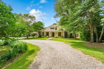 Baldwin County Single Family Home For Sale: 6231 Nelson Drive