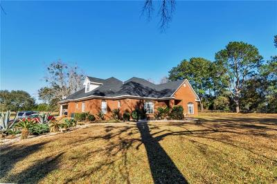 Mobile County Single Family Home For Sale: 10400 Johnson Road S
