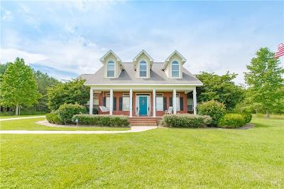 Baldwin County Single Family Home For Sale: 17158 County Road 64