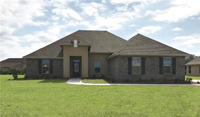 Baldwin County Single Family Home For Sale: 429 Breckin Drive