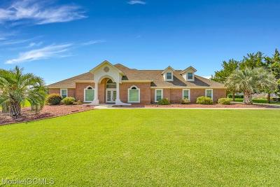 Baldwin County Single Family Home For Sale: 9324 Lakeview Drive