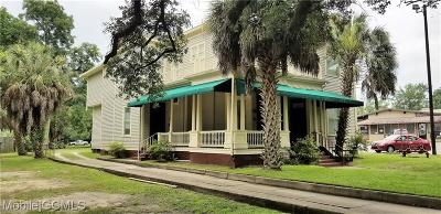 Mobile County Multi Family Home For Sale: 1109 Government