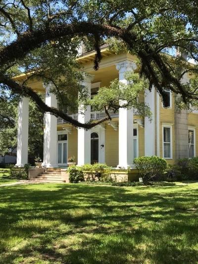 Mobile County Single Family Home For Sale: 160 Rapier Avenue