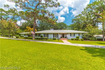 Mobile Single Family Home For Sale: 205 Rochester Road