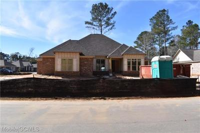 Baldwin County Single Family Home For Sale: 163 Hollow Haven Street
