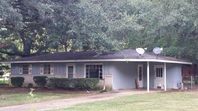 Grand Bay Single Family Home For Sale: 10537 Oak Avenue