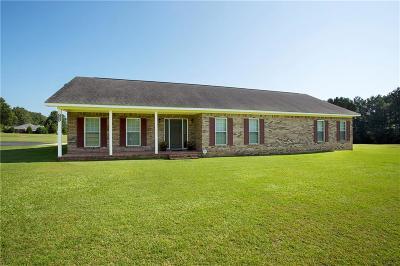 Single Family Home For Sale: 8806 Jeff Hamilton Road