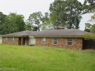 Citronelle Single Family Home For Sale: 19610 Hester Drive