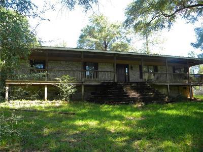 Chunchula Single Family Home For Sale: 9850 Highway 45