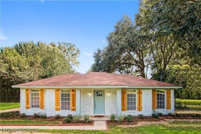 Semmes Single Family Home For Sale: 9987 Downing Street