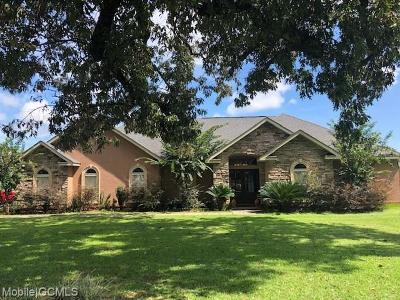 Theodore Single Family Home For Sale: 10221 Kipling Court N