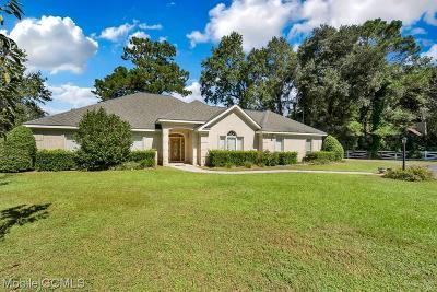 Baldwin County Single Family Home For Sale: 11001 McKenzie Road