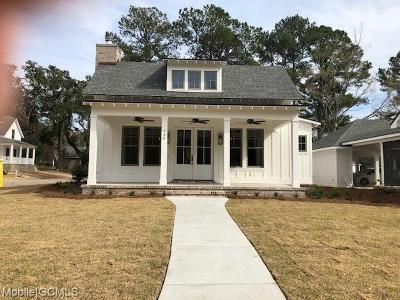 Baldwin County Single Family Home For Sale: 724 Boundary Drive