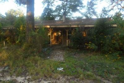 Chunchula Single Family Home For Sale: 14175 Highway 45