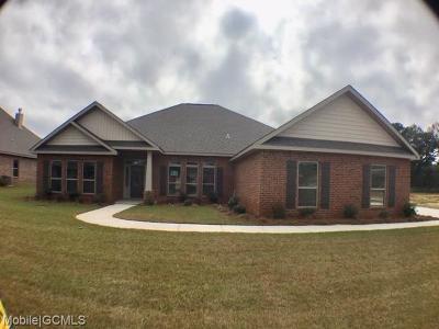 Single Family Home For Sale: 9011 Crain Avenue