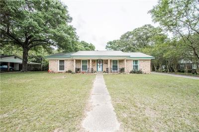 Single Family Home For Sale: 261 Lakeview Drive