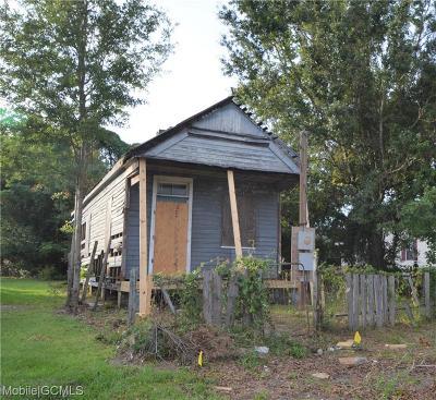 Mobile Single Family Home For Sale: 253 Locust Street