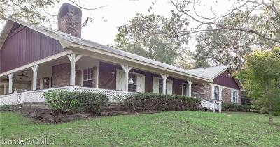 Chunchula Single Family Home For Sale: 11655 Highway 45